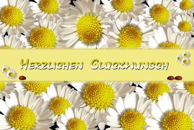 635420_web_R_K_B_by_Rosel Eckstein_pixelio.de